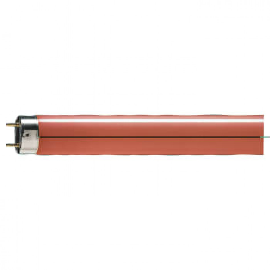 Storslået Lysrør TL-D COLORED G13 36w/150 rød (red) 25 stk - PHILIPS LYS A/S UY91